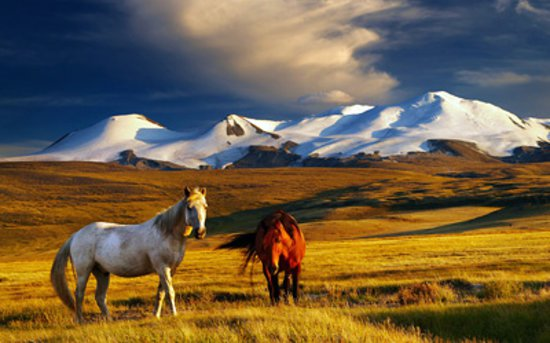 plateau-ukok-south-altay